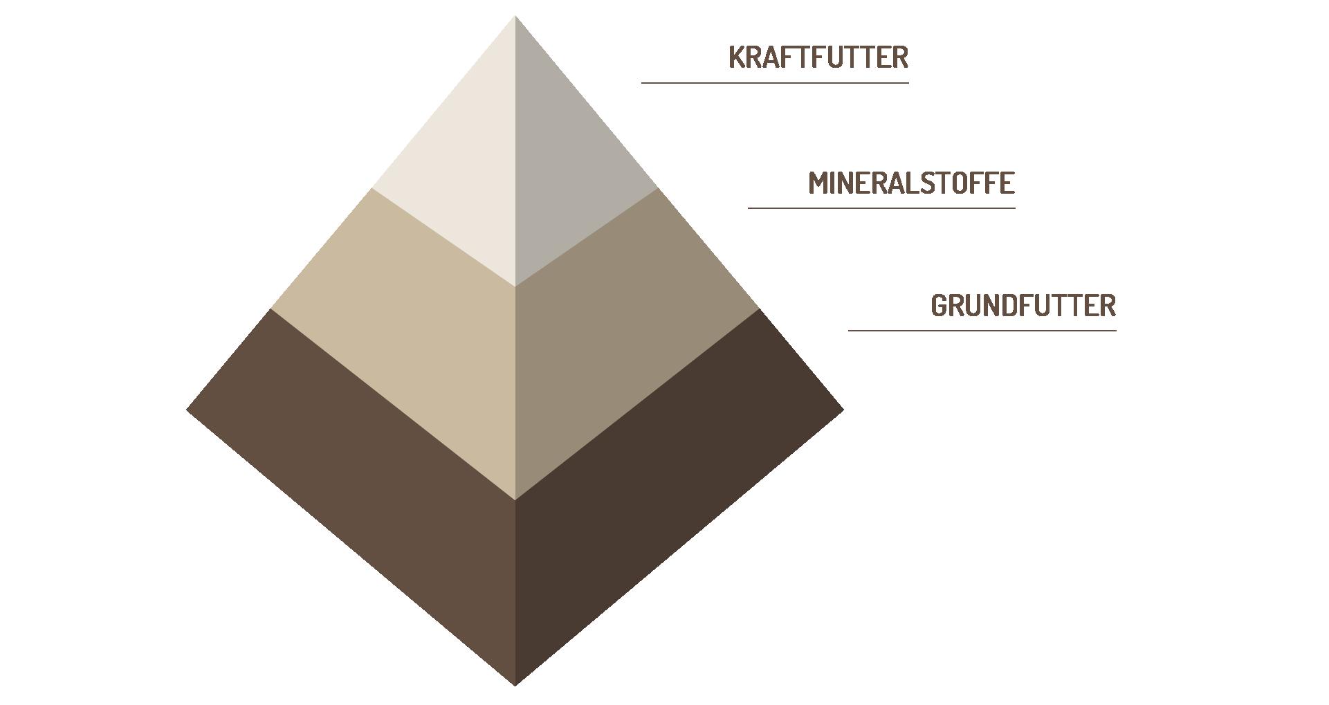 Futter Pyramide